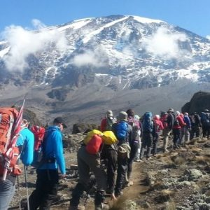 Trek Mt Kilimanjaro Lemosho Route Via Crater Camp Tour 2 265485 1510029029